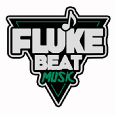 fluke beat music cover