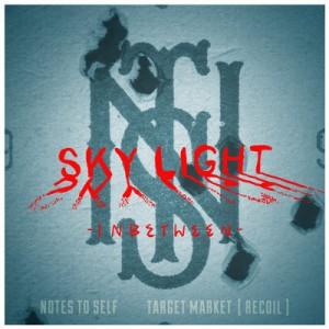 sky light cover