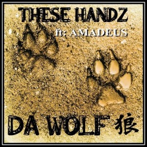 these handz cover 2