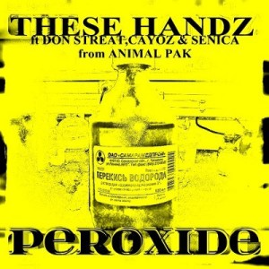 these handz cover 5