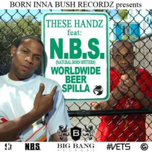 these handz cover 6