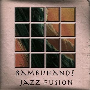 bambu hands cover