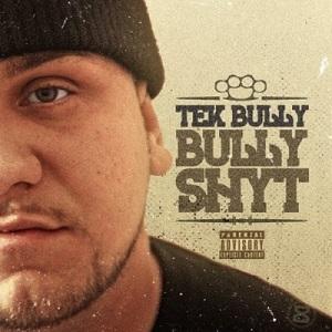 tek bully cover