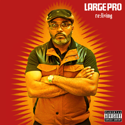 large pro cover