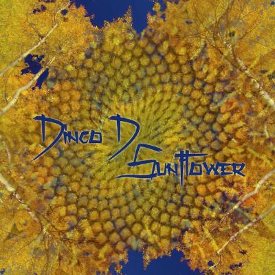 dinco cover