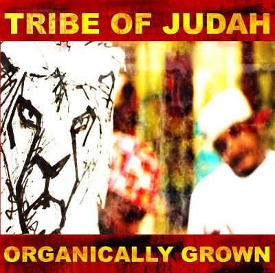 tribe of judah cover