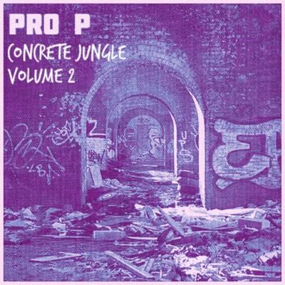 pro-p-cover
