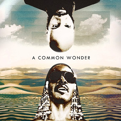 common wonder cover