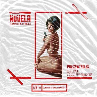 novela cover