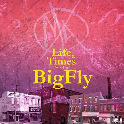big fly cover