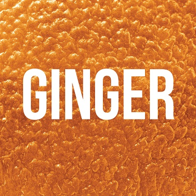 ginger cover