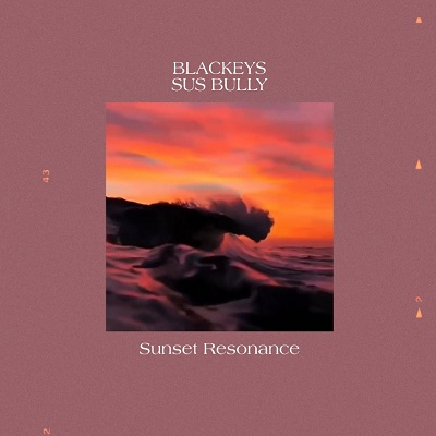 sus bully cover